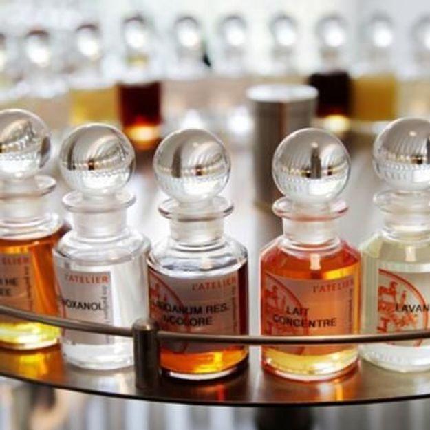 Dans le secret des parfumeurs...