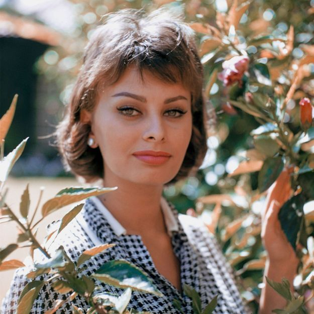 Sophia Loren, la beauté à l'italienne