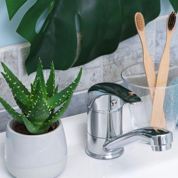 5 idées simples pour une salle de bain plus respectueuse de l'environnement