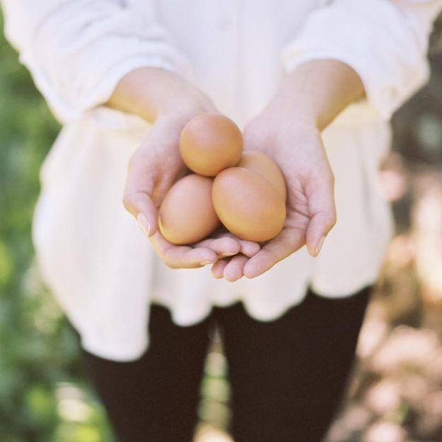 L'œuf, l'allié de votre peau pour une rentrée réussie