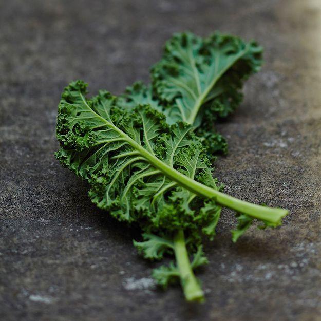 Adresses : où trouver du kale?