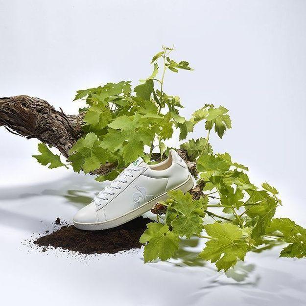 L'instant mode : Le Coq Sportif lance une basket fabriquée avec du raisin