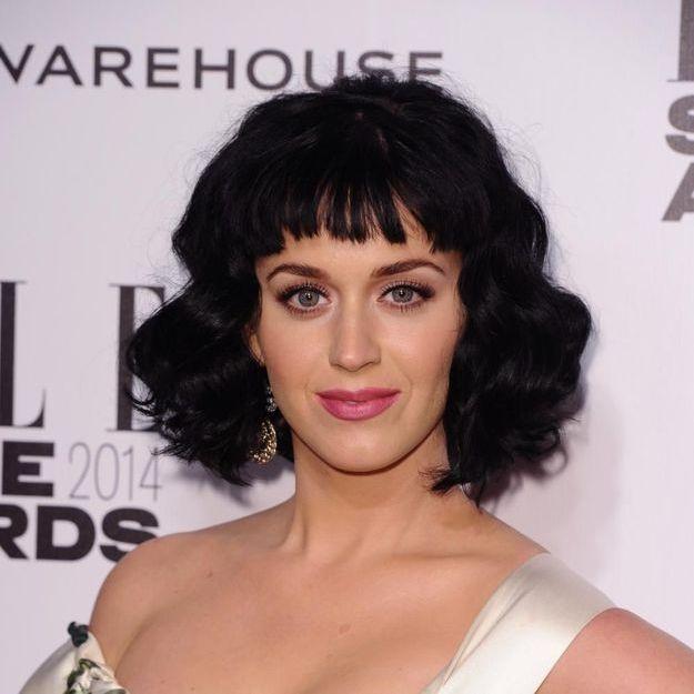 Katy Perry violemment critiquée par son frère sur Twitter