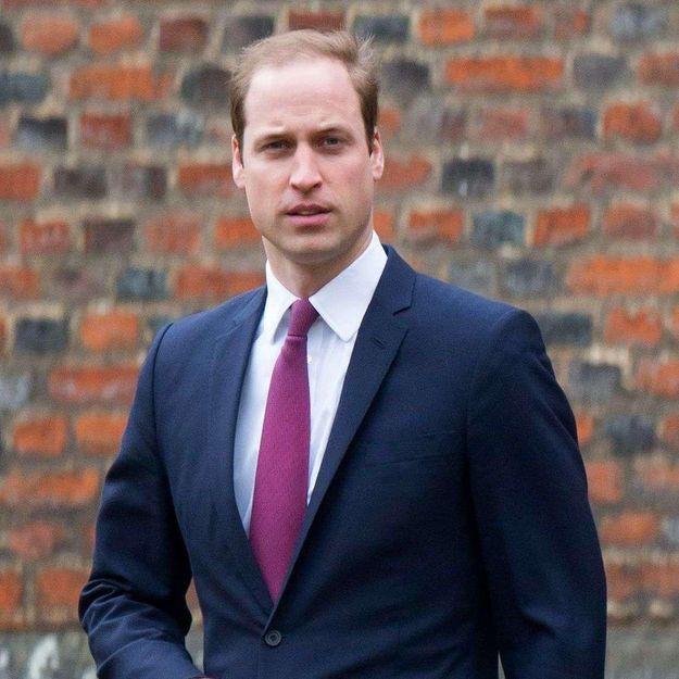 Le prince William lance un appel pour sauver les éléphants