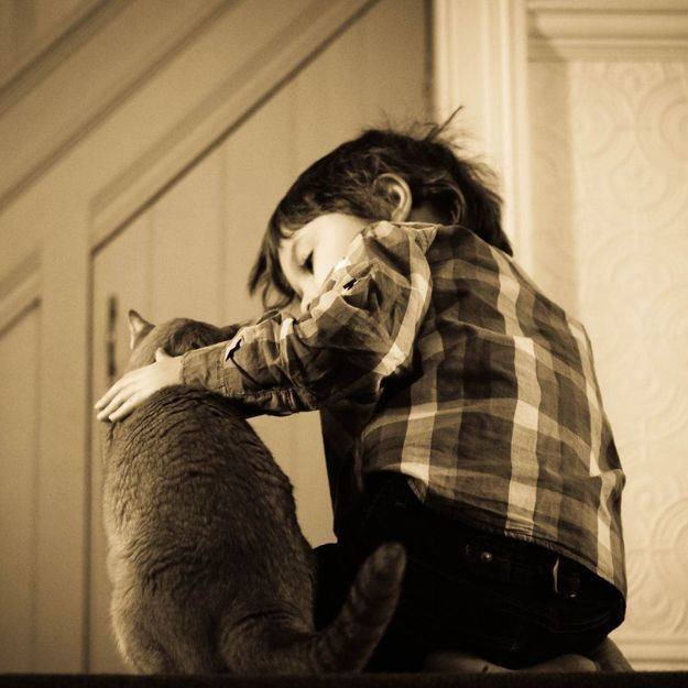 L'histoire incroyable d'un garçon attaqué par un chien et sauvé par son chat