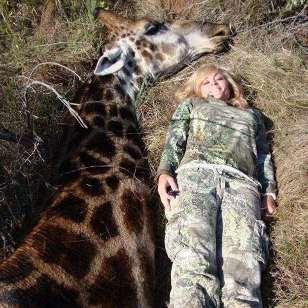 Une chasseuse de girafes scandalise la Toile