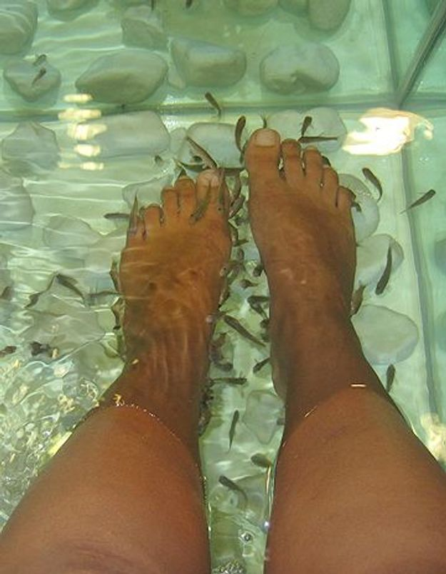 J'ai testé la fish pedicure !