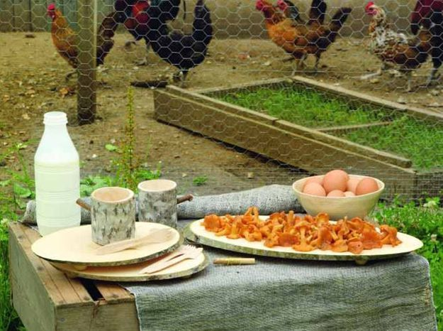 Déjeuner d'automne 100% écolo