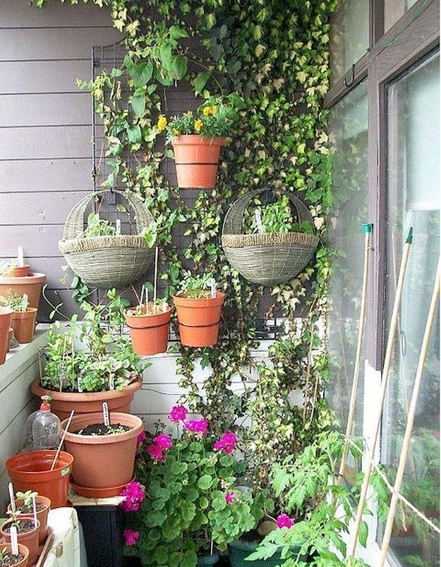 Balcon végétal