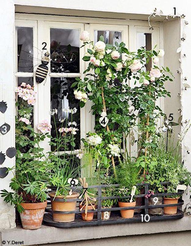 Decoration shopping tendance balcon terrasse verdure fenetre bucolique