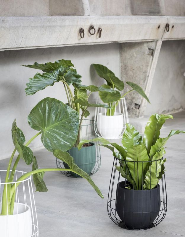 notre s lection de cache pots pour mettre en valeur vos plantes elle d coration. Black Bedroom Furniture Sets. Home Design Ideas