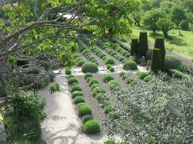 Jardin de la Louve dans le Lubéron