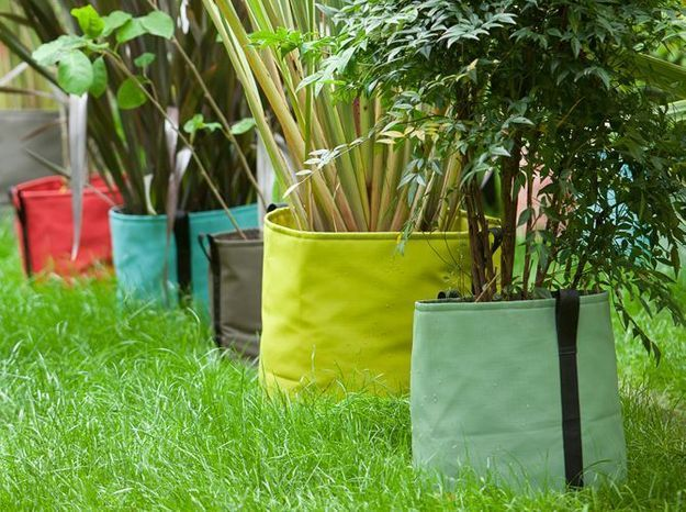 Accumulez des pots de fleurs colorés dans le jardin