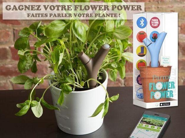 Gagnez votre Flower Power… un accessoire indispensable pour jardiner !