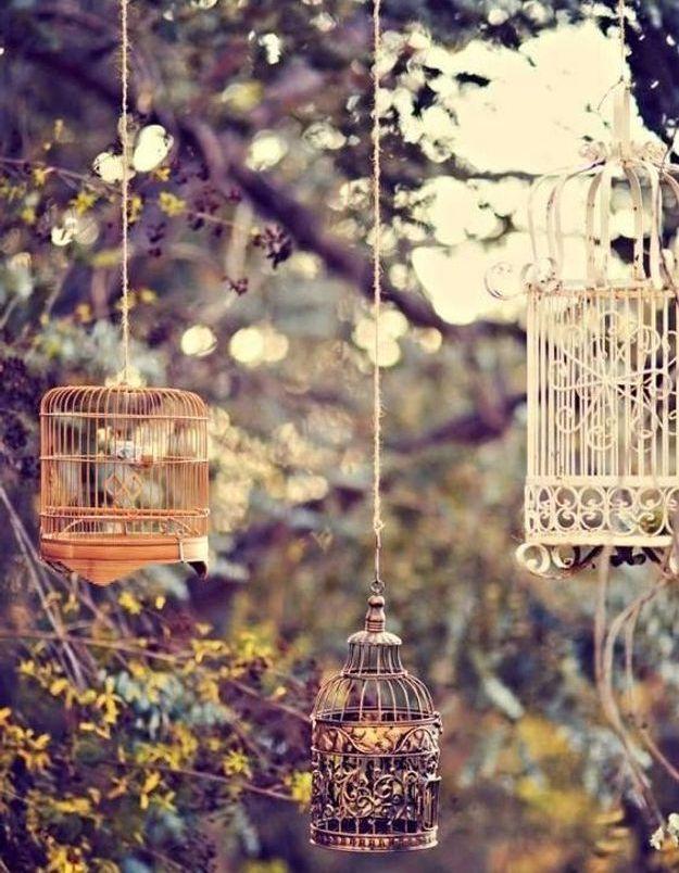 Suspendre aux branches des cages à oiseaux pour un style romantique