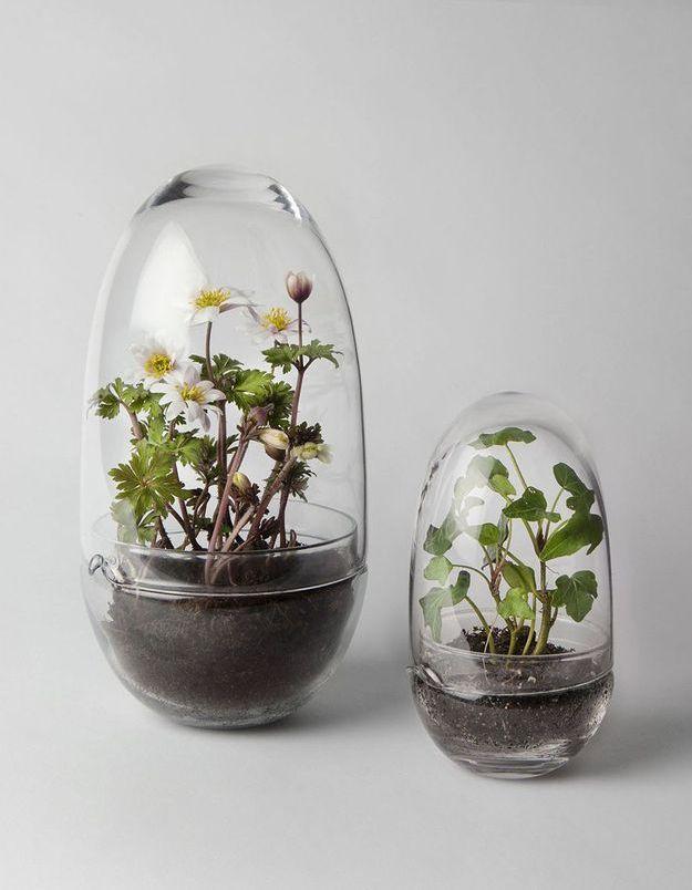 Uf pour terrarium Design House Stockholm