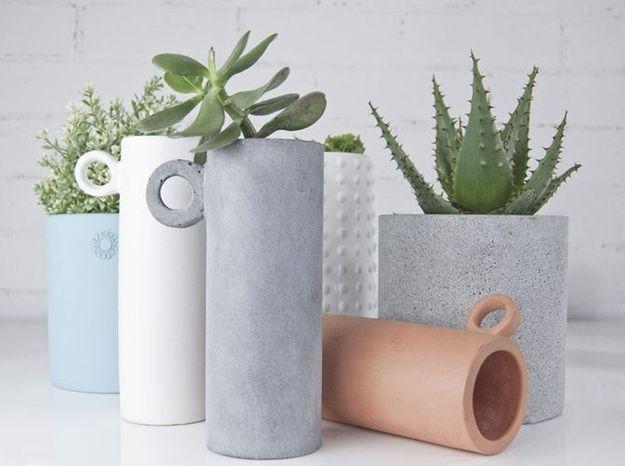 Un cactus dans un pot en béton