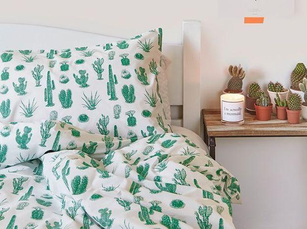 Un cactus sur la table de chevet