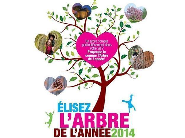 Proposez votre candidat pour l'arbre de l'année 2014 !