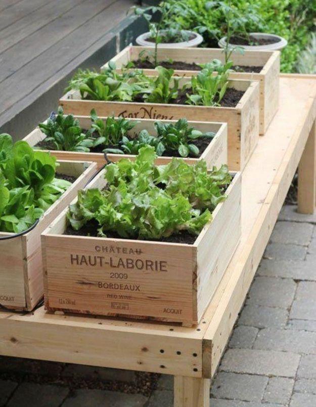 Des caisses à vin recyclées en jardinières