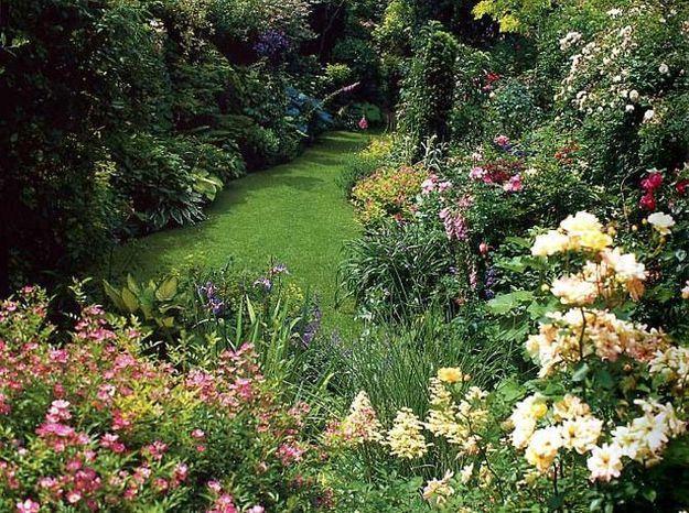 Jardin anglais fleuri