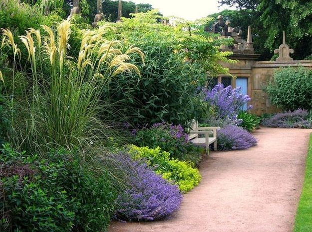 Jardin anglais solitaire