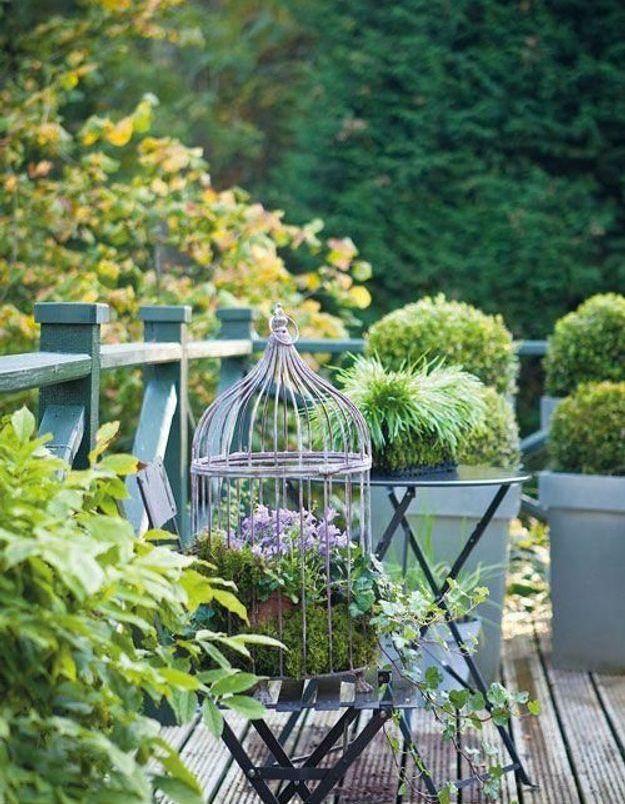 Miser sur la cage d'oiseau vintage pour apporter une touche romantique