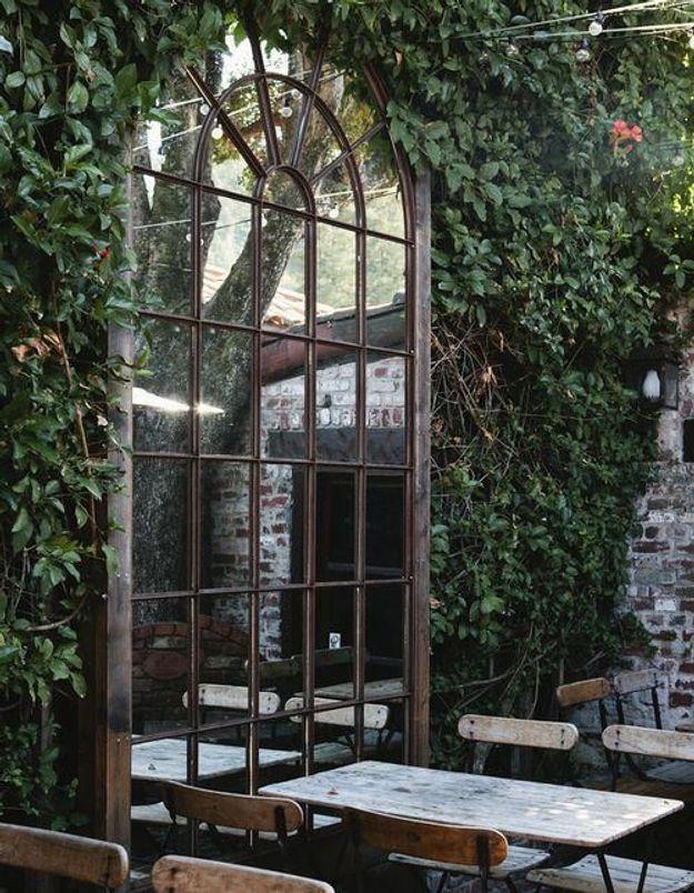 Placer un miroir au milieu des plantes pour deux fois plus de végétaux