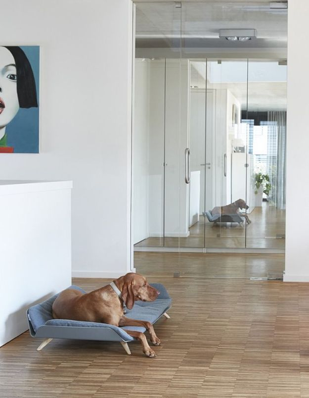 Canapé-lit pour animal Mia Cara