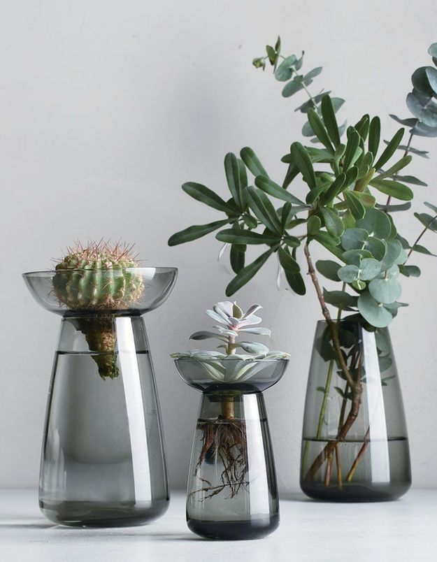 Vase pour aqua culture Kinto