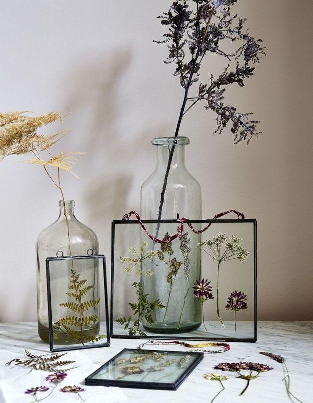 Des fleurs séchées encadrées