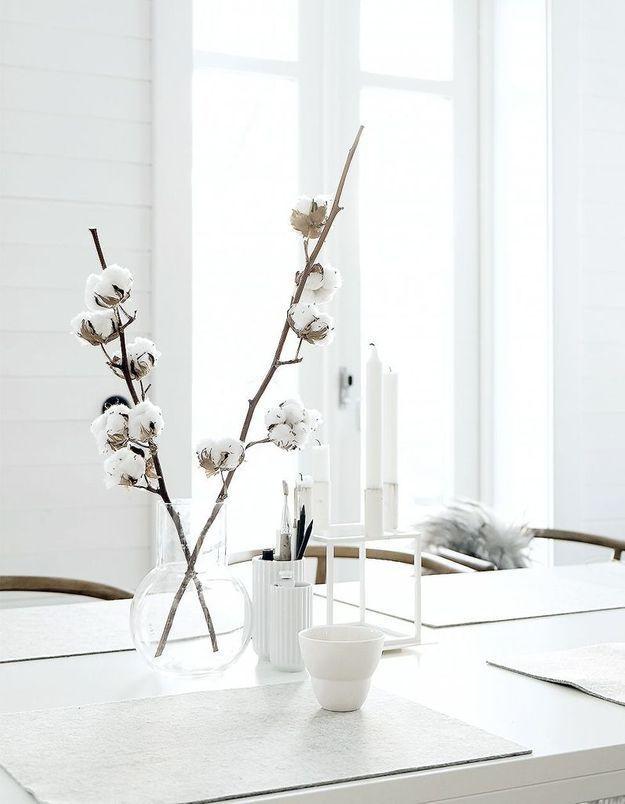 Un bouquet de branches de coton séchées