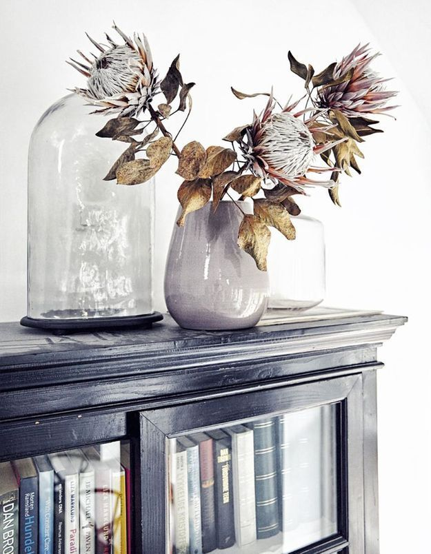 Un bouquet de proteas séchées