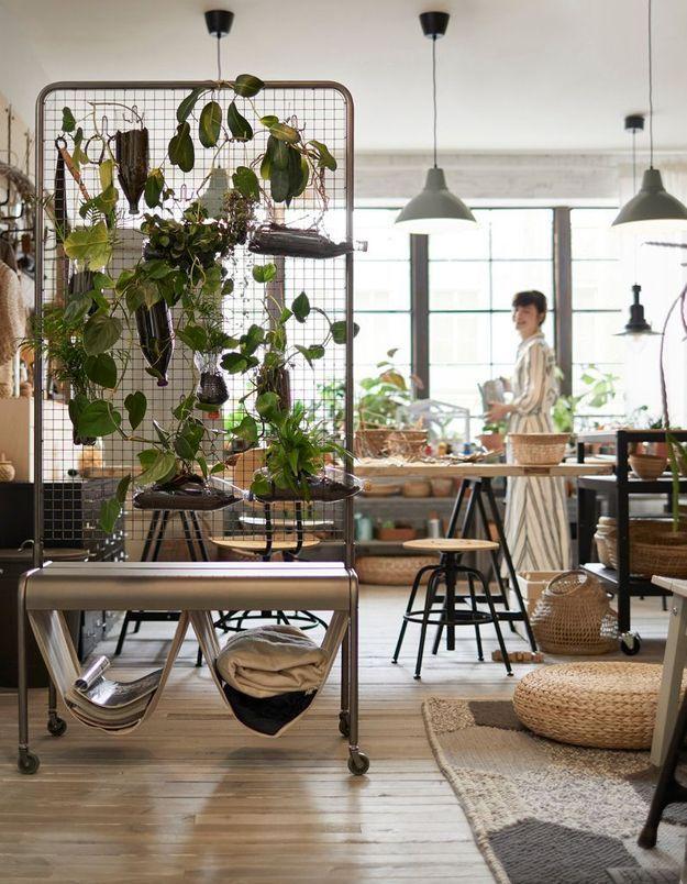 Délimiter les espaces avec un séparateur de pièce végétal et à roulettes