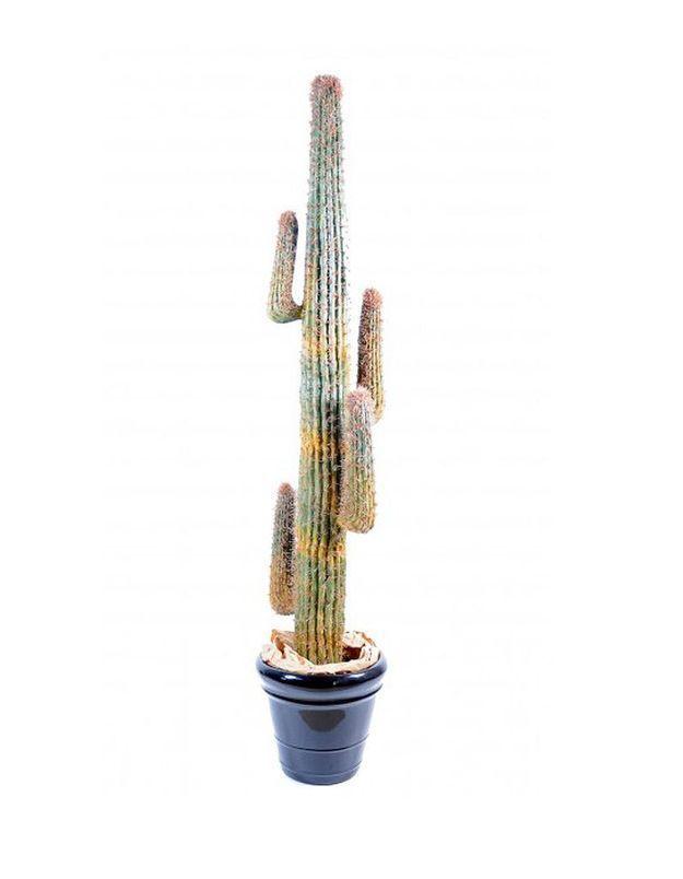 Cactus artificiel Deco Mundo