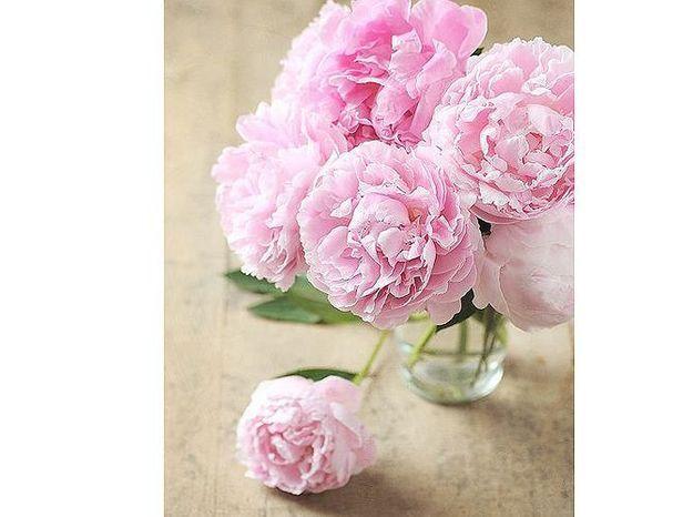 Et les fleurs préférées des ELLEnautes sont…