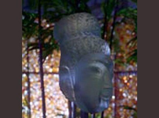 Exposition Jardin de cristal