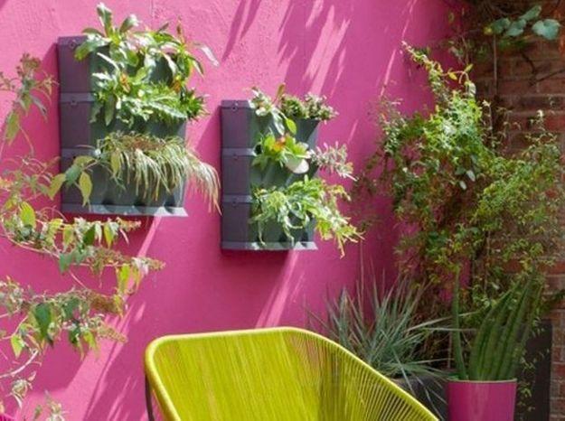 Mur vegetal castorama