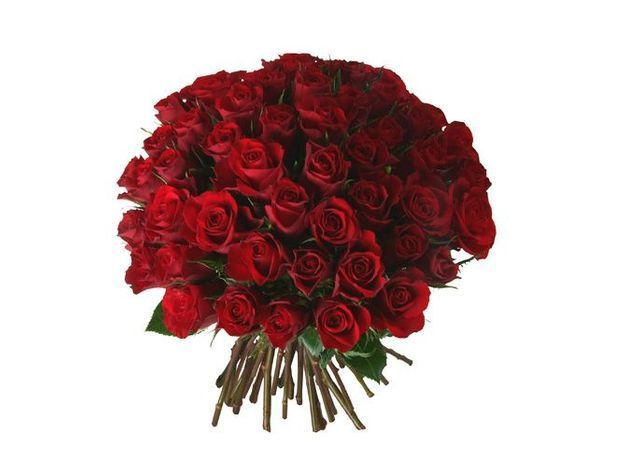 Bouquet rose rouge aquarell