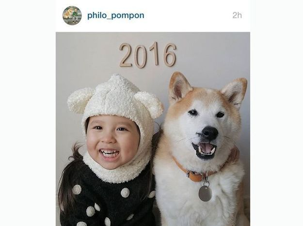 @philo_pompon