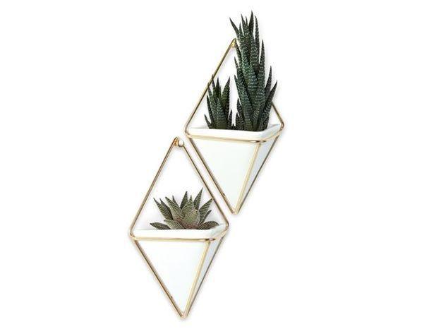 Des pots géométriques à suspendre au mur