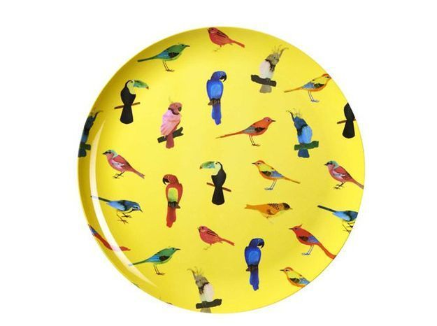 Habitatplateaubirdsjaune