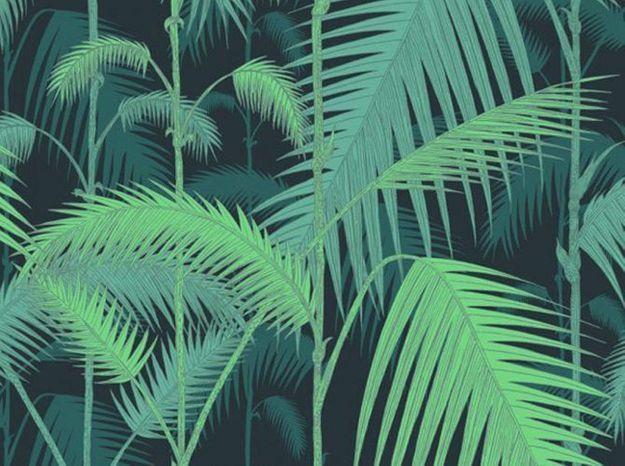 Coleandsonpapierpeinttropical