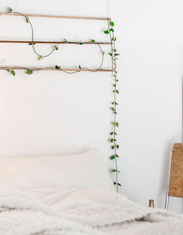Une plante en guise de tête de lit