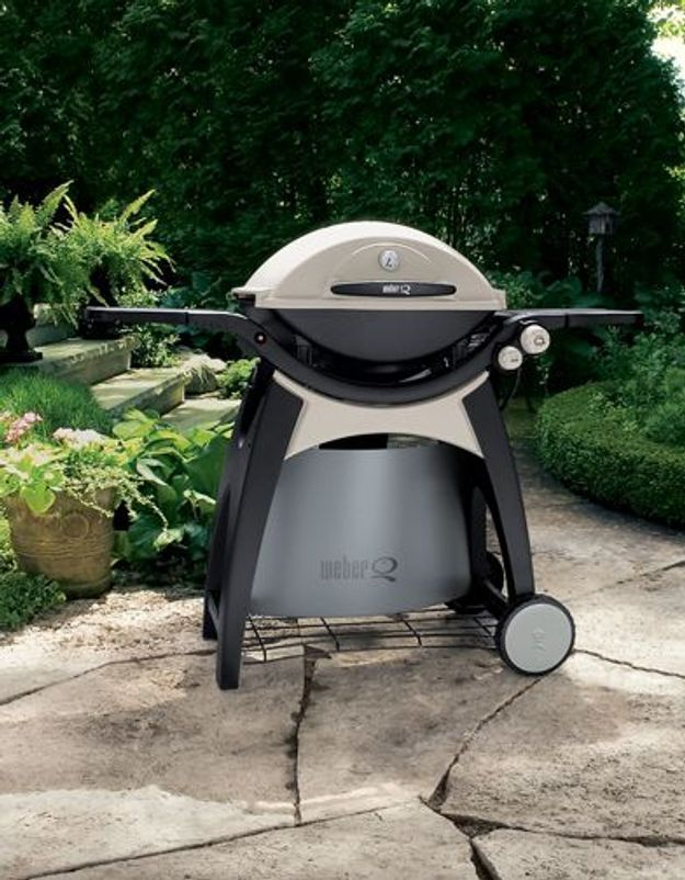 Barbecue Q 300 Weber