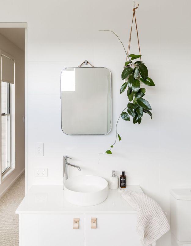 Pensez à la plante suspendue pour décorer la salle de bains