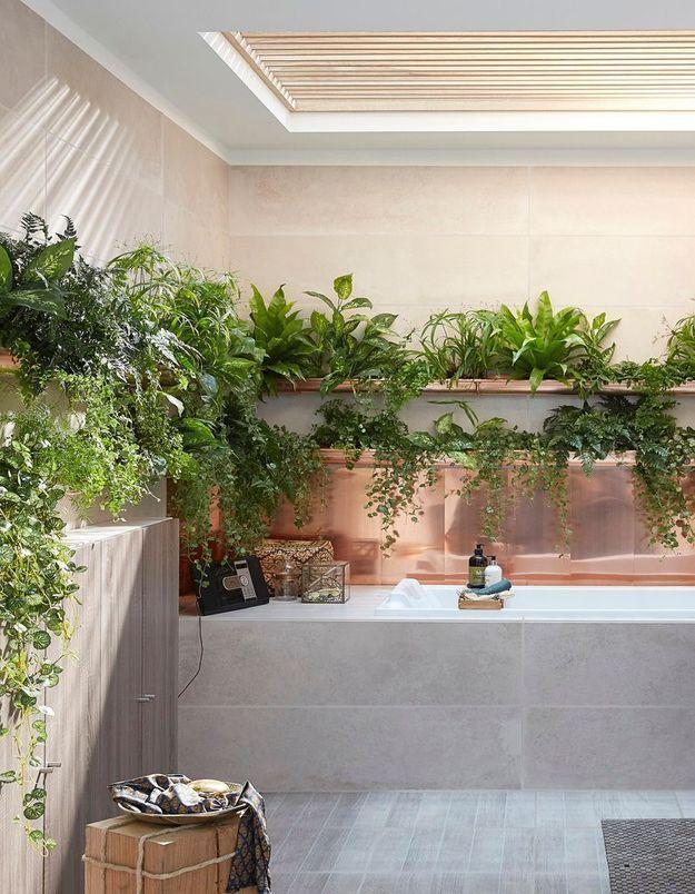 Apporter un esprit jungle via les plantes pour une salle de bains zen