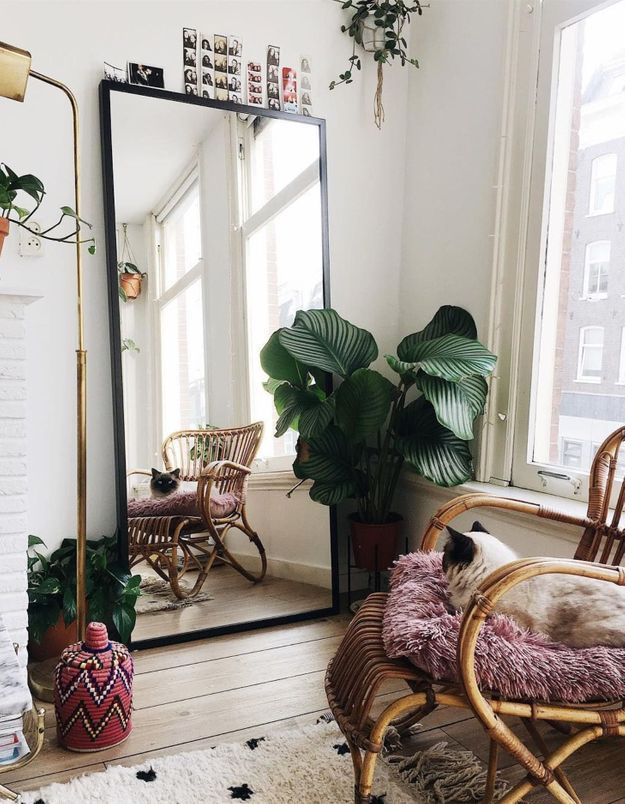 Maxi effet avec une plante XXL dans le salon