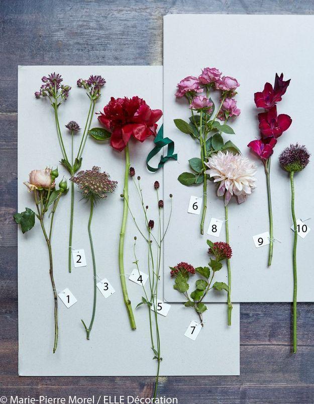 10 fleurs stars pour 3 bouquets d 39 automne elle d coration. Black Bedroom Furniture Sets. Home Design Ideas