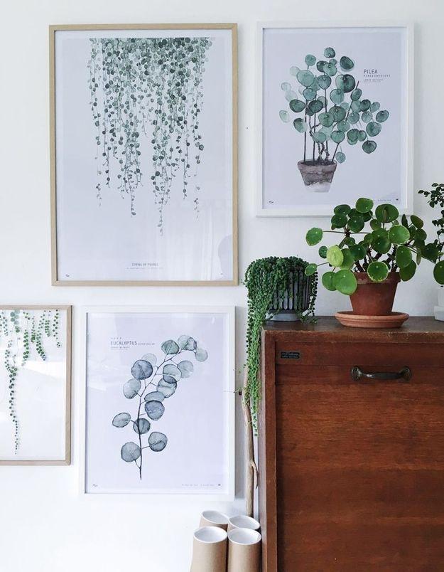 Affiches végétales pour une déco cocooning